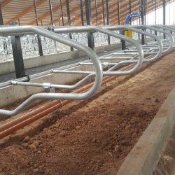 4-D multipurpose freestall dividers